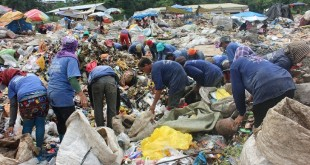 DEADLINE. Scavengers work at the city's sanitary landfill in Dagong in Carmen yesterday. The ombudsman has ordered city hall to completely close down the city dump by May 2017. (PHOTO BY NITZ ARANCON)