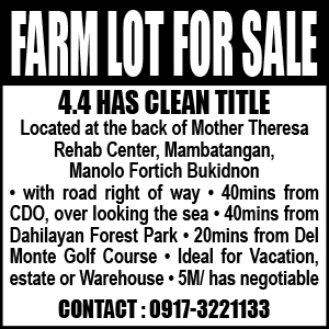 For Sale: Bukidnon Farm Lot