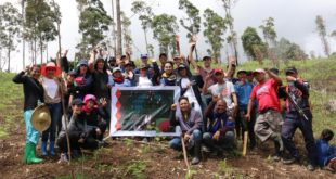 Oro water district, partners hold tree planting activity