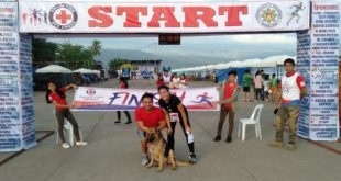 FOUR-LEGGED MARATHONER